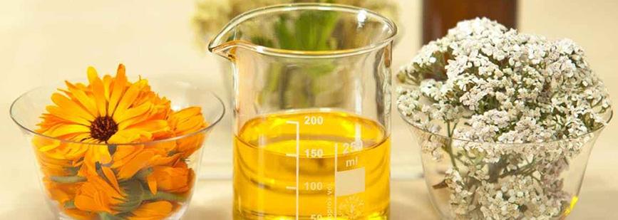 10-propiedades-del-aceite-de-arbol-de-te