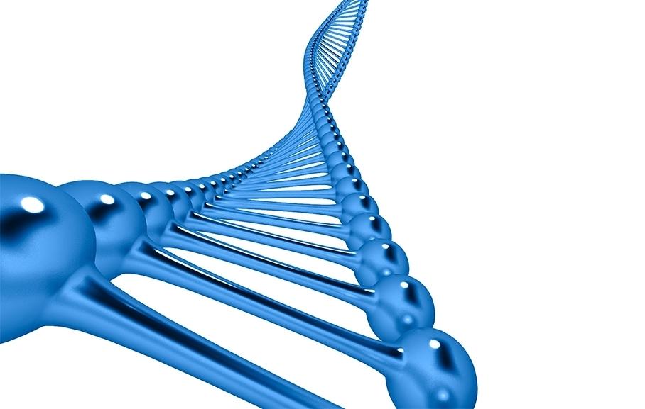 ADN-Test-Genético-Ynsadiet