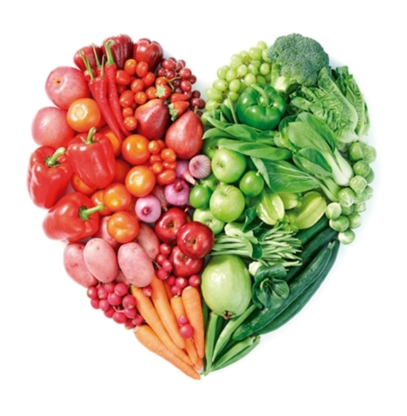 Sistema-Nutricional-Dietasol-Ynsadiet