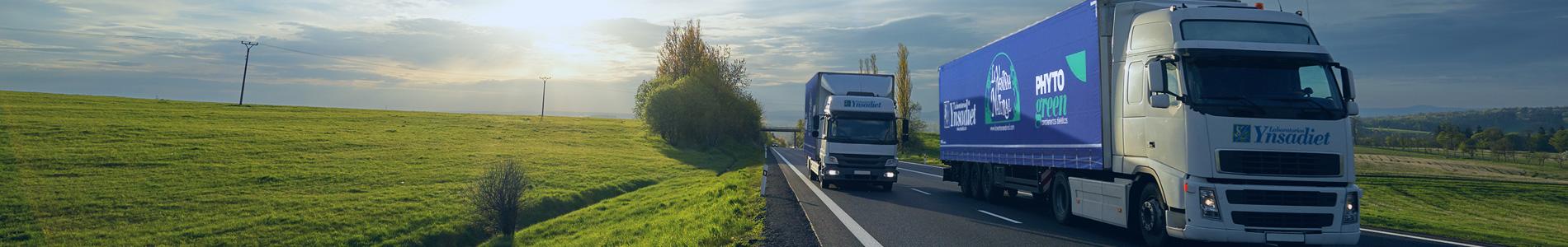 Camiones2-Ynsadiet