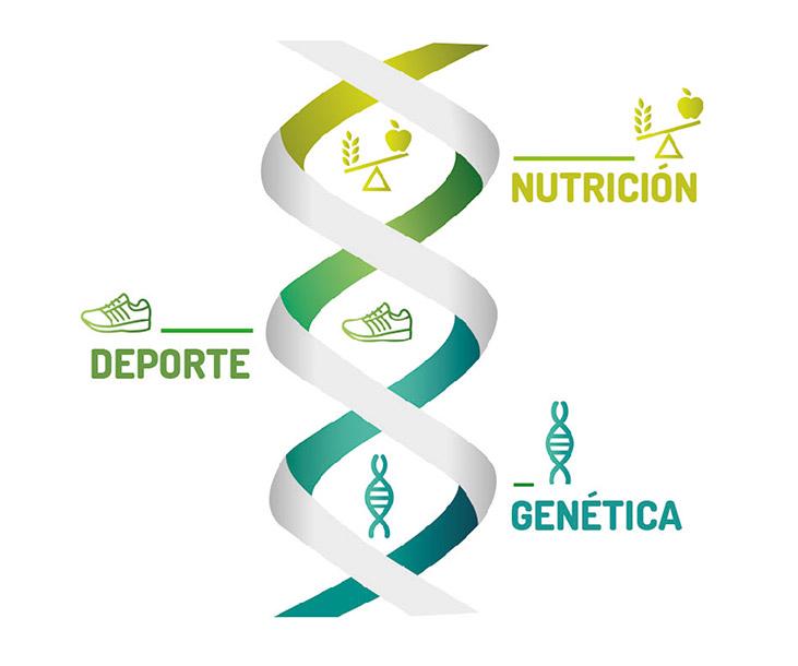 Prueba-Genética-Balance-Sport-Diet-Ynsadiet