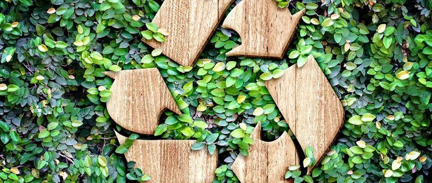 ynsadiet-recicla